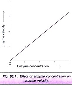 an analysis of the enzyme amylase and the investigation into the factors affecting its activity In seeking an explanation for biochemical factors that influence the postprandial glycaemic response of starch-containing foods, a study was made of the action of pancreatic α-amylase on wheat starch.