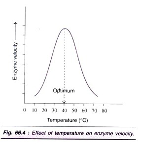lab report on effect of enzymes essay Essay about enzyme action lab write up the effect of ph on the rate of an enzyme reaction purpose/problem the problem being investigated in this lab is the effects of salt concentration.