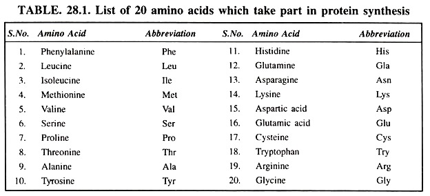 List of 20 Amino Acids