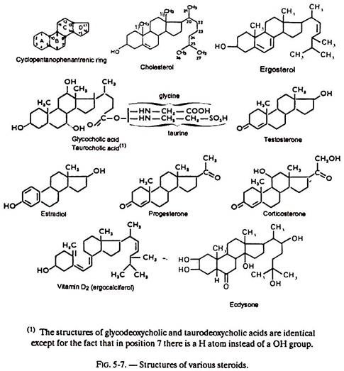 Structures of Various Steroids